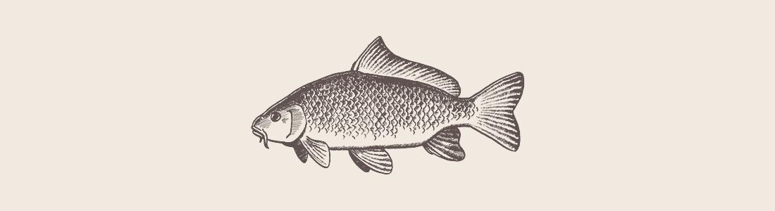 Honlap referencia Tiszacsegei Halászcsárda